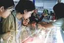 duty drop to add glitter to jewellery firms