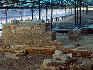 vn learns archaeological display from egypt