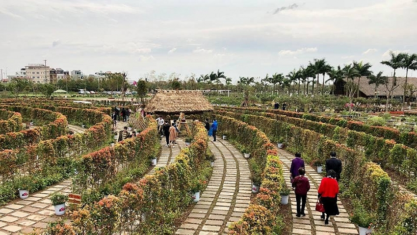vietnams first verdure labyrinth entrances curious minds in hanoi