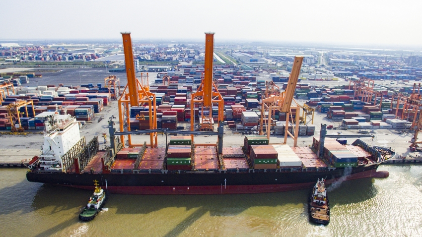 tan vu container terminal looks to become e port