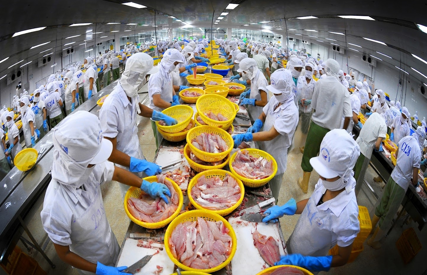Vietnam approves development scheme for seafood processing in 2021-2030