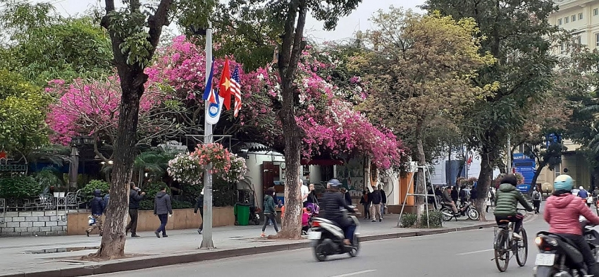 hanoi to celebrate the us north korea summit with flags and flowers