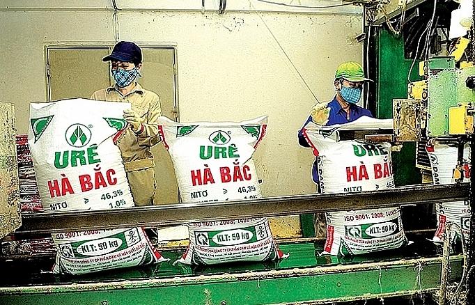 dam ha bac makes record quarterly loss in fourth quarter of 2019