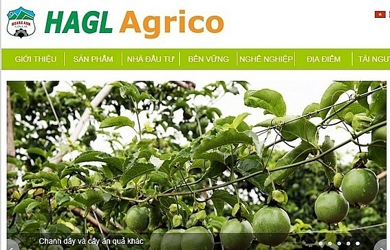 hagl agrico continues selling subsidiary