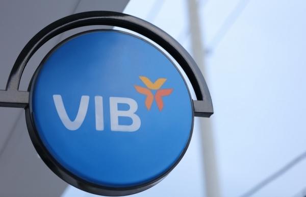vib plans 24 per cent jump in pre tax profit