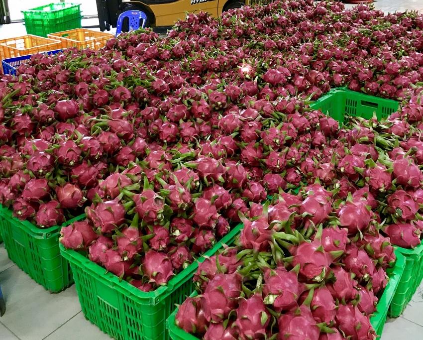 mm mega market vietnam promotes domestic agri products via big c thailand
