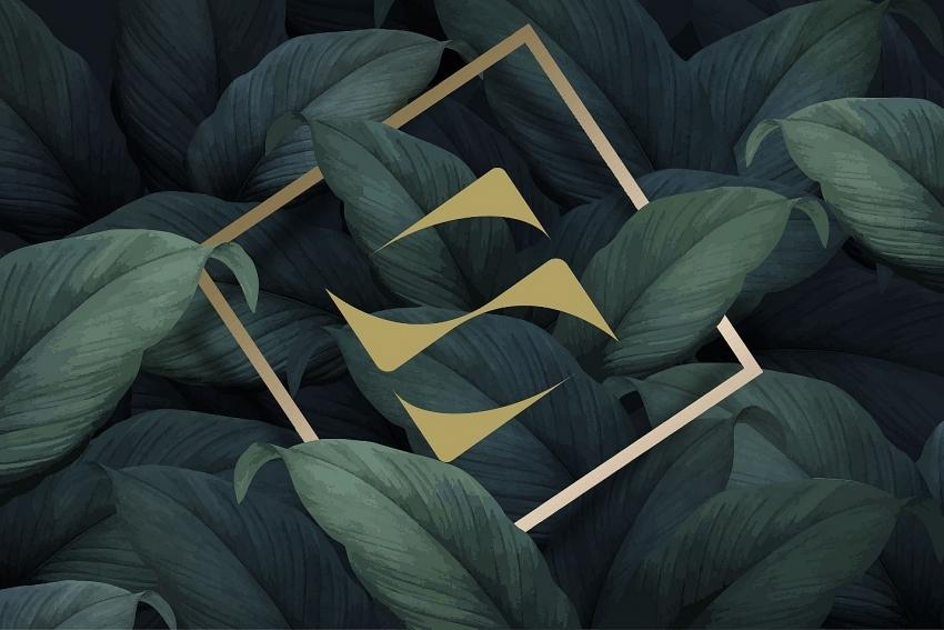 sonkim land ready to leapfrog through elevating brand identity