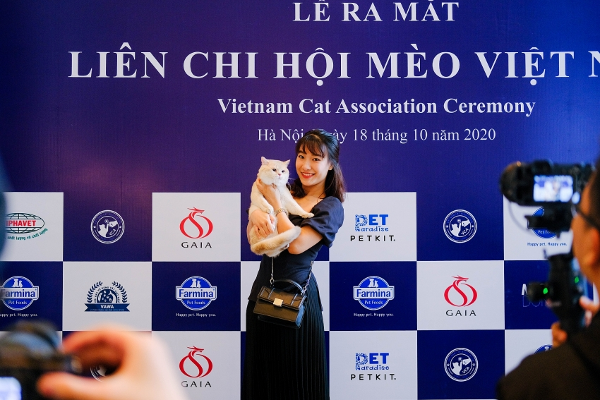 vietnam cat association officially launched in hanoi