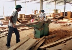 wood processing plants urged to join associations