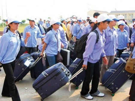 vietnamese labour export prospects narrow