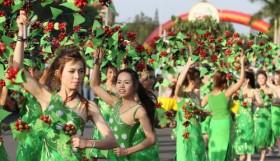 Coffee festival to return to Dak Lak in March
