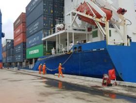 Gov't to tap Mekong Delta potential