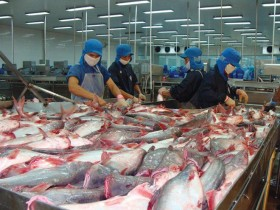Series of Vietnamese exporters fall prey to Canadian scammer company