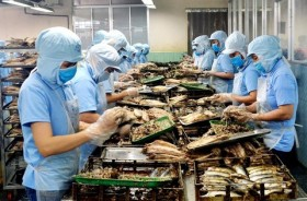 phu yen province sets up fund for smes