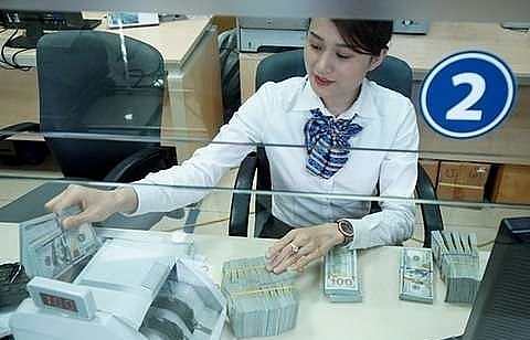 central bank resumes dollar purchases to build up foreign reserve