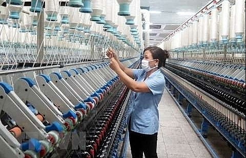 firms asked to start internal audits