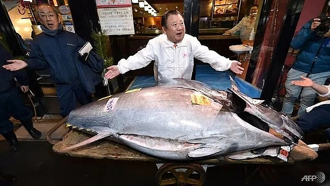japan tuna king buys new year catch for us 18 million