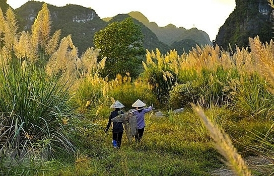 ninh binh expects to welcome 78 million tourists in 2020