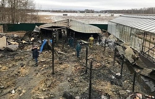 vietnamese embassy identifies moscow farm fire victims