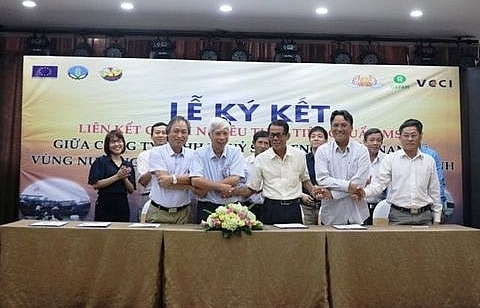 mou signed for building sustainable clam supply chain in mekong delta