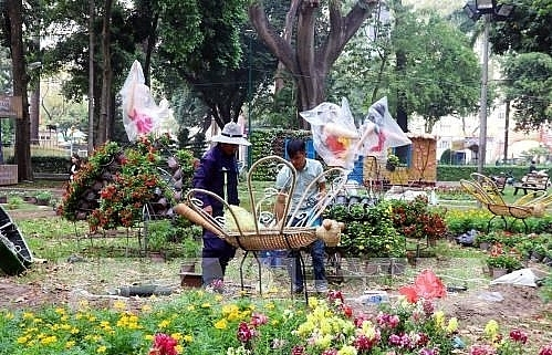 hcm city gets busy with flower festivals markets ahead of tet