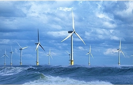 Wind power projects boom in Tra Vinh