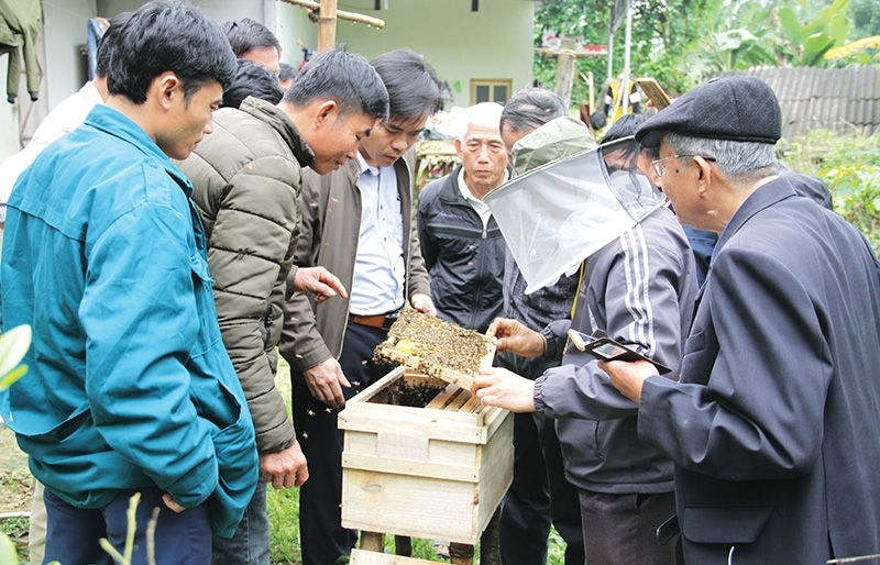 beekeepers buzzing with initiatives enhancements