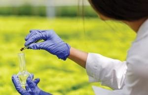 thailand adopts strategic plan on bio circular and green economy
