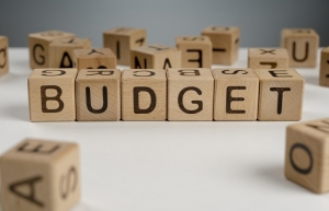 stable structure for state budget