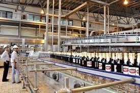 brewers add fizz to beer market