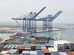 vung tau seaports receive few vessels despite huge investments