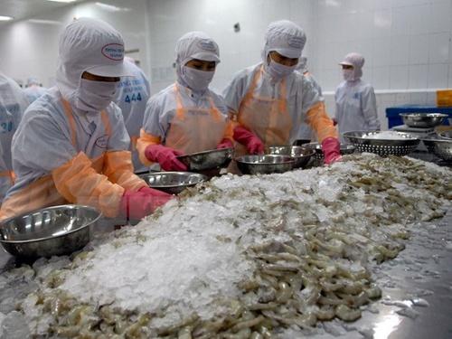 Viet Nam Becomes Largest Shrimp Exporter To S Korea