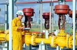 PV Gas dominates Cambodian market