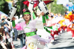 Japanese cherry blossom festival to open in Hanoi