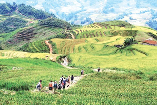 Lao Cai, Sa Pa, Phanxipan Mountain Peak, Vietnam economy, Vietnamnet bridge, English news about Vietnam, Vietnam news, news about Vietnam, English news, Vietnamnet news, latest news on Vietnam, Vietnam