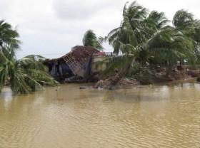 WB experts assist Binh Dinh's post-disaster rebuilding effort