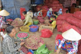HCM City seeks to attract tourists to wholesale markets