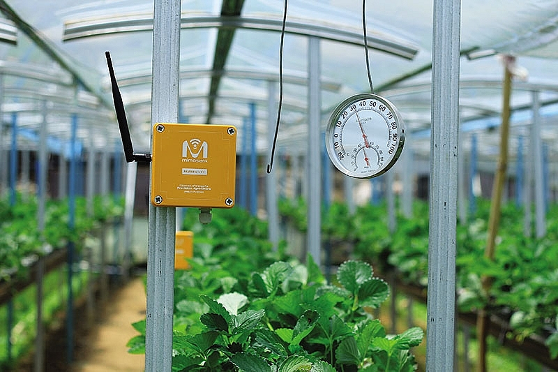 startups seek to change game in smart agritech