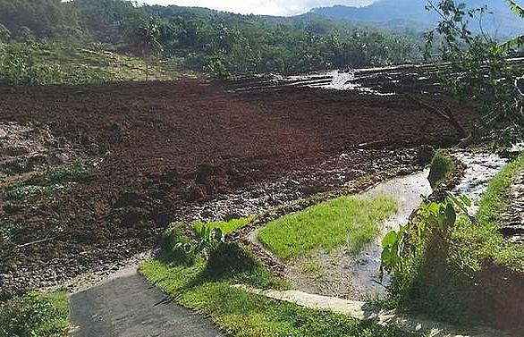 five dead 15 missing in indonesia landslide