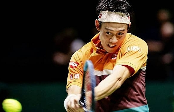 nishikori eases into rotterdam quarter finals