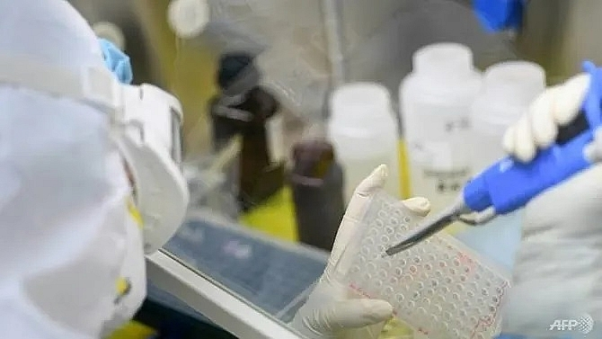 scientists race to develop vaccine for new coronavirus