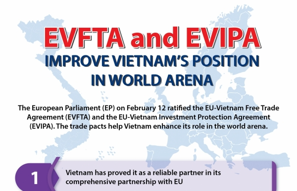 evfta evipa improve vietnams position in world arena infographics
