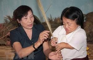 vietnam attends un social development commission session
