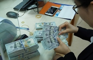 reference exchange rate down 10 vnd on february 28