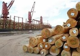 wood product exports soar in month