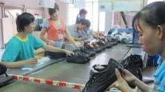 chances await vn shoemakers in eu market