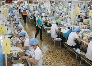 firms demand safety net
