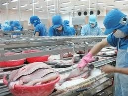 seafood rejects cost nation 14 million