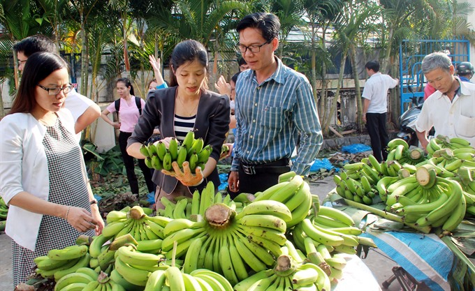price fluctuations trouble for farmers in dong nai
