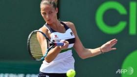 Pliskova eases through in Miami Open